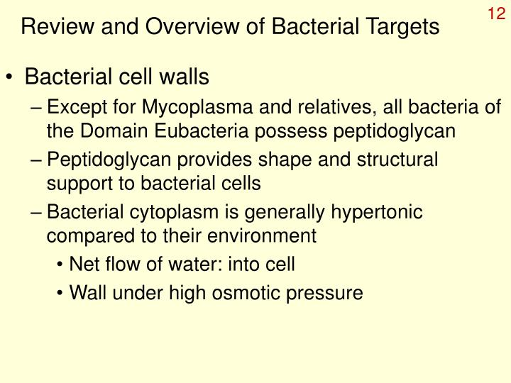 Review and Overview of Bacterial Targets