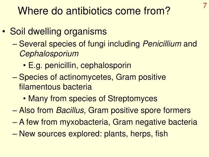 Where do antibiotics come from?