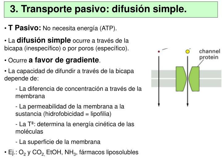 3. Transporte pasivo: difusión simple.