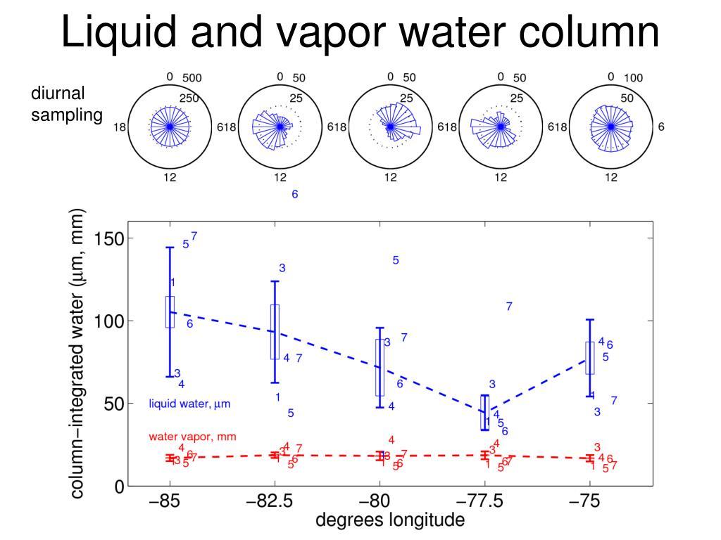 Liquid and vapor water column