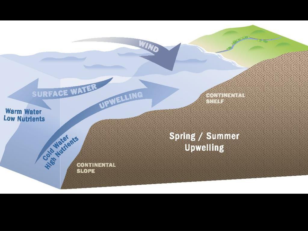 22. Upwelling diagram