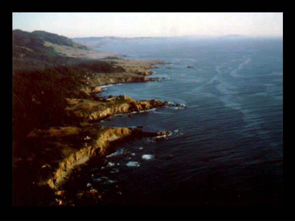 23. Sonoma Coastline