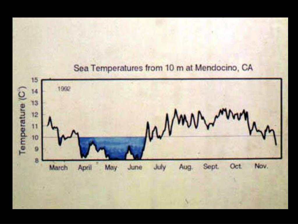 25. Temperature Graph