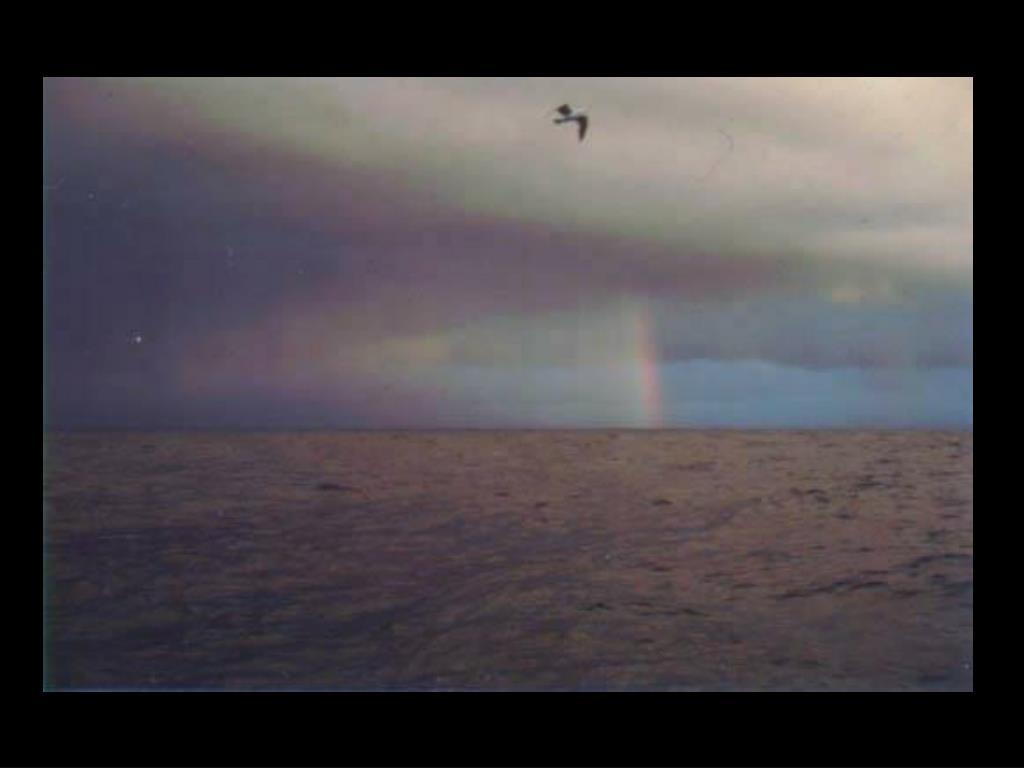 64. Rainbow on ocean