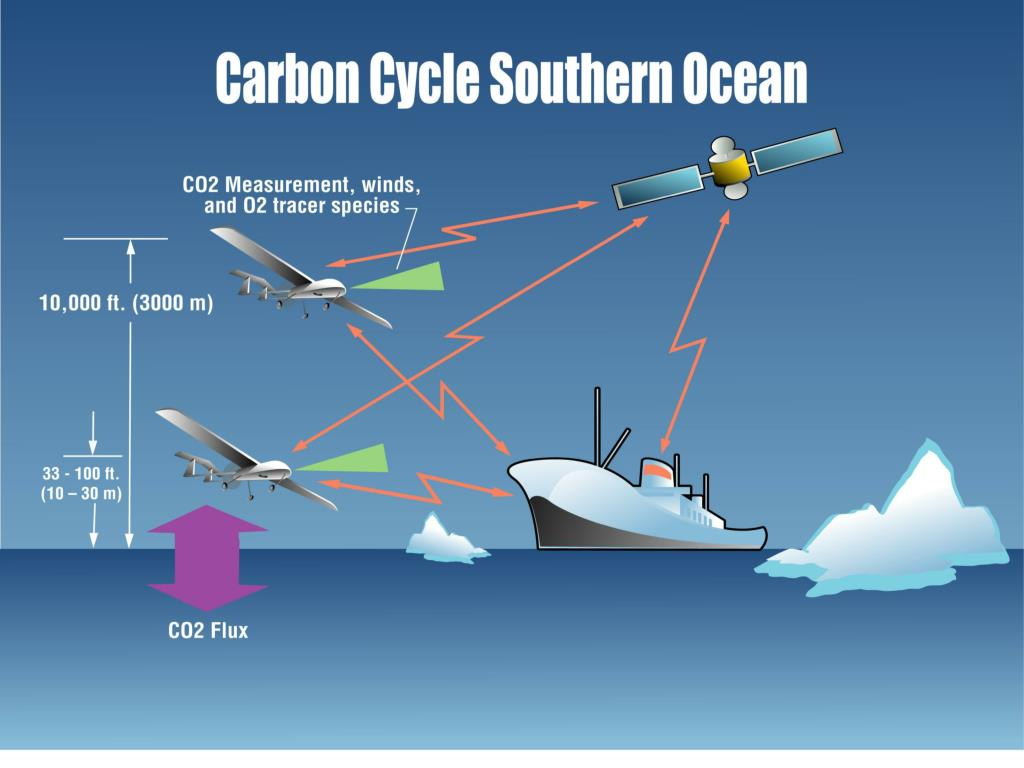 Southern Ocean Carbon Cycle, cont'd