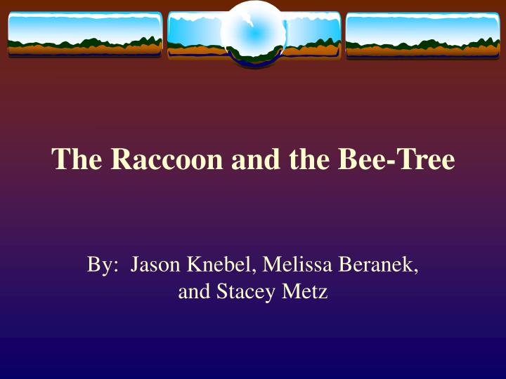the raccoon and the bee tree n.