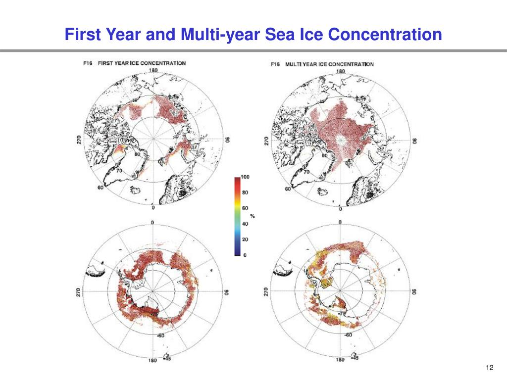 First Year and Multi-year Sea Ice Concentration