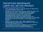iniciativas regionales labor del sector privado