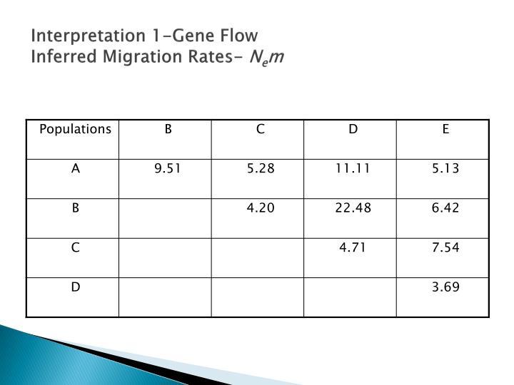 Interpretation 1-Gene Flow