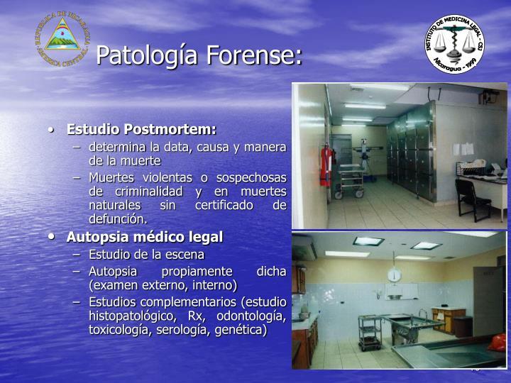 Patología Forense: