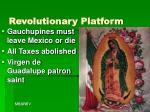 revolutionary platform
