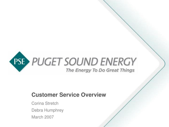 customer service overview n.