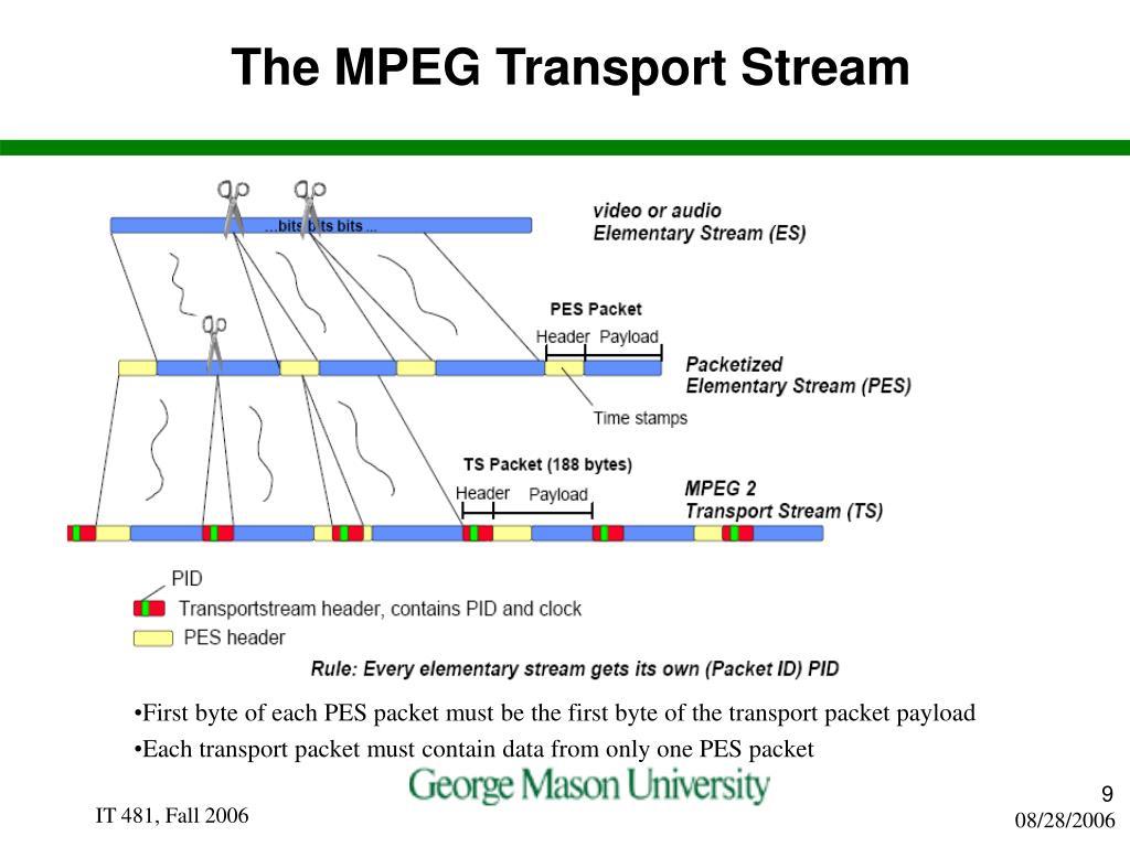 The MPEG Transport Stream