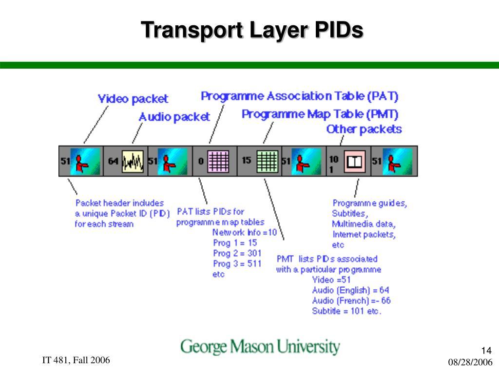 Transport Layer PIDs