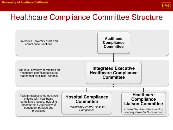 healthcare compliance committee structure n.