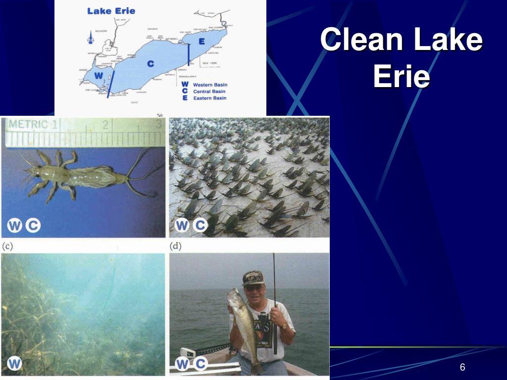 Clean Lake Erie