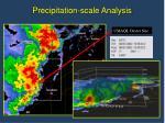 precipitation scale analysis