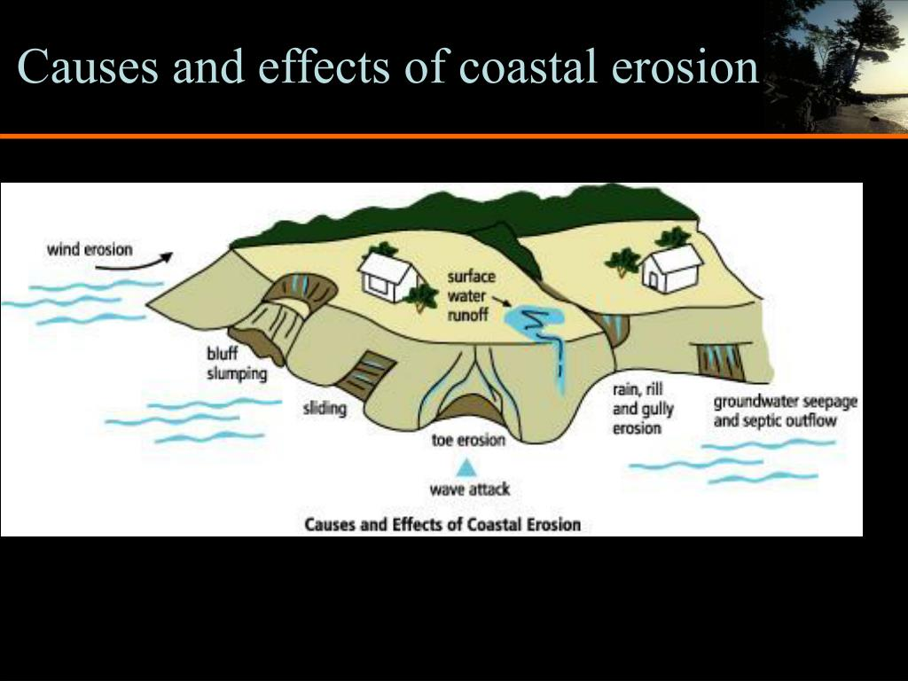 Causes and effects of coastal erosion
