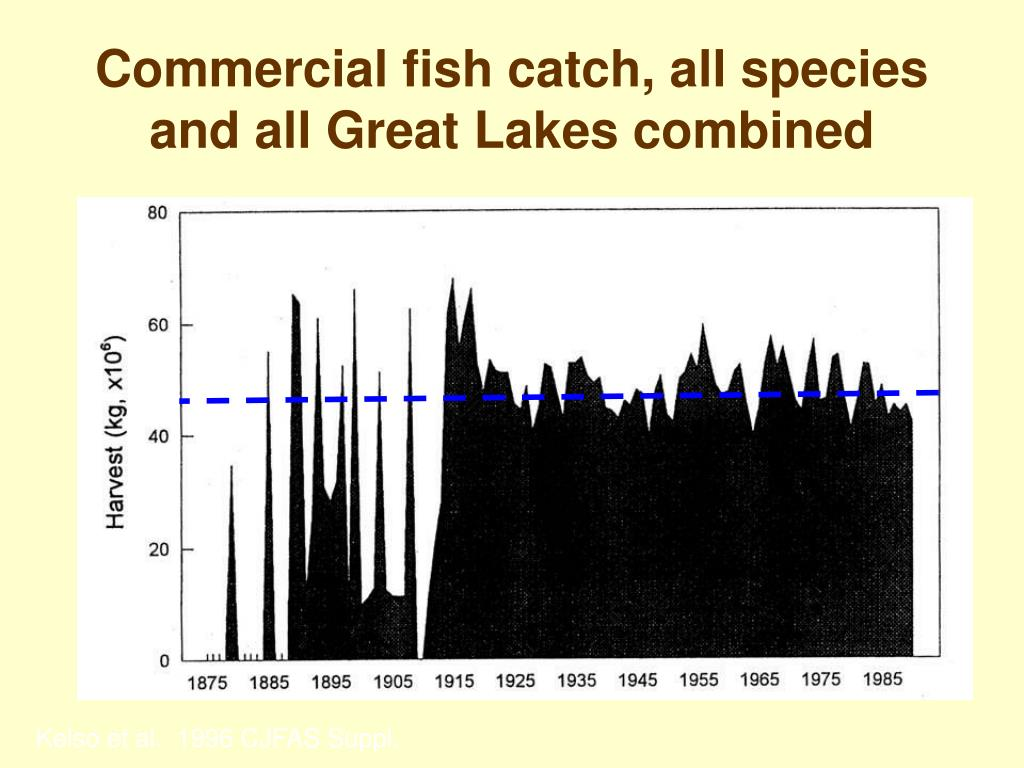 Commercial fish catch, all species and all Great Lakes combined