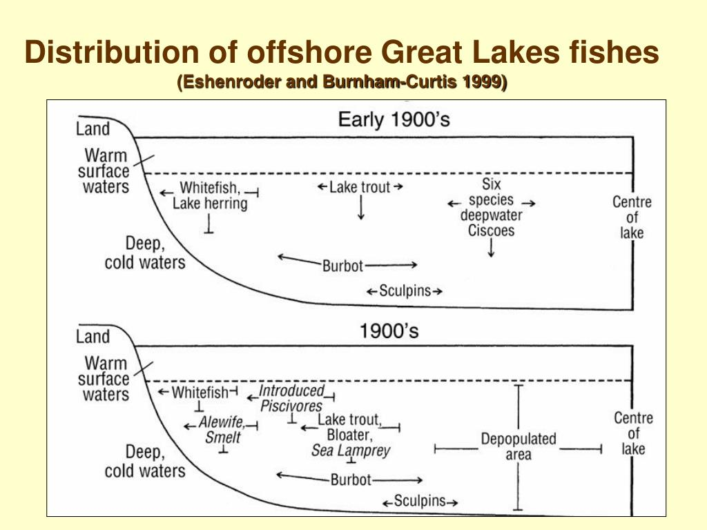 Distribution of offshore Great Lakes fishes