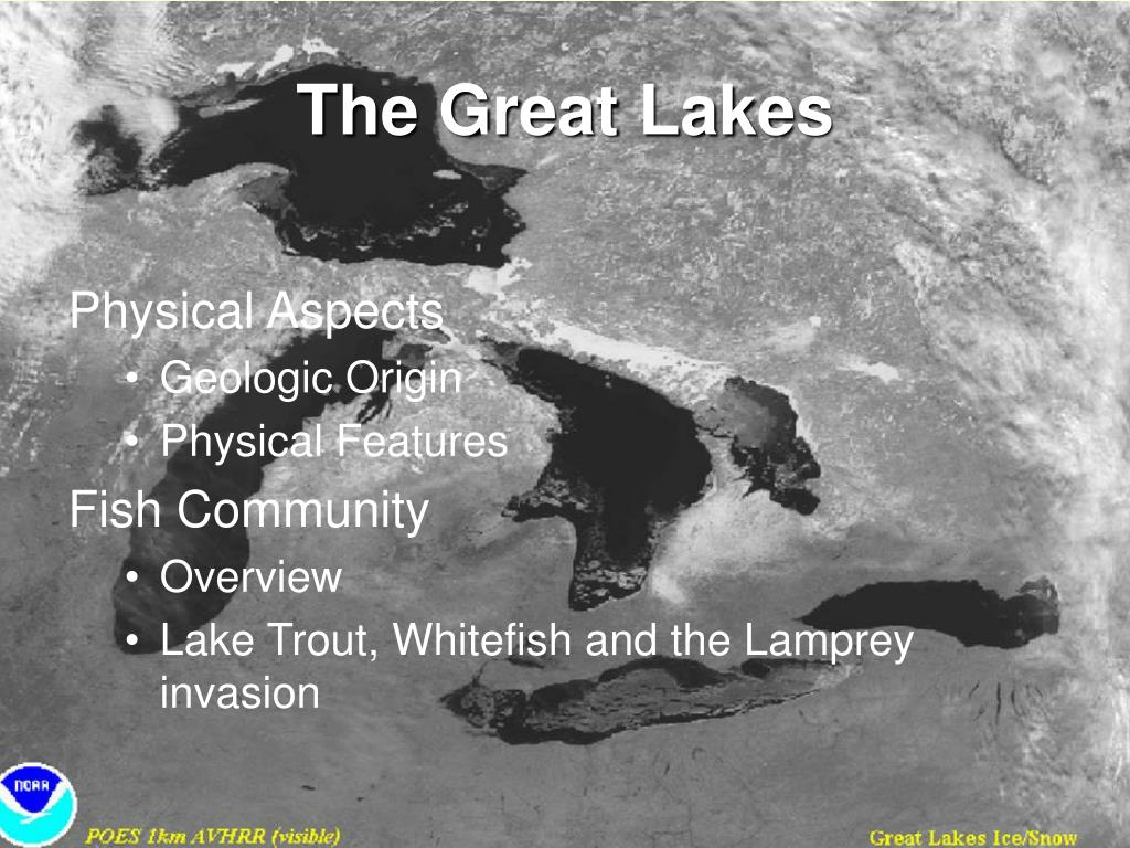 the great lakes l.