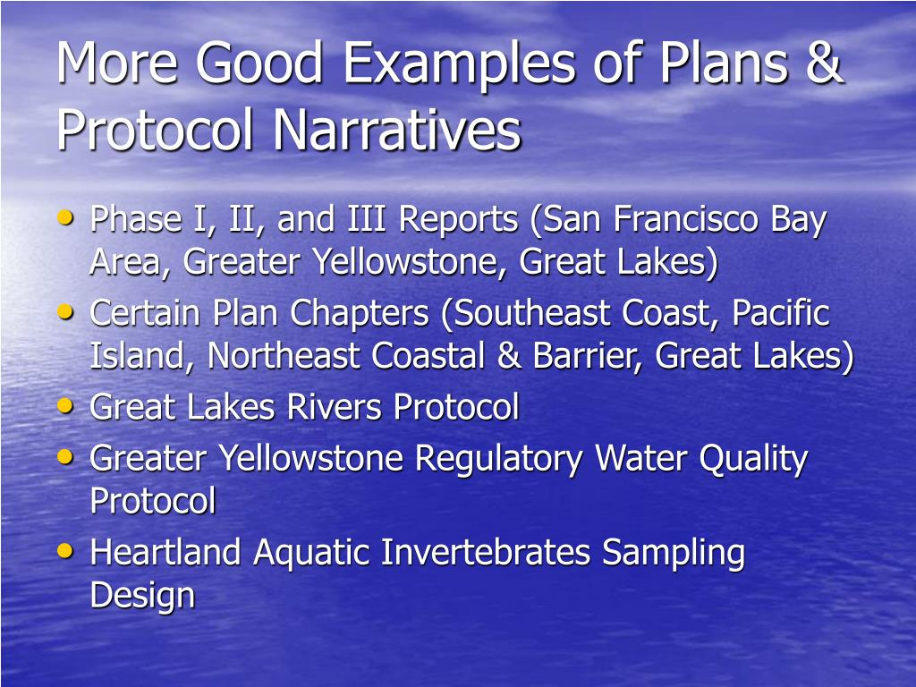 More Good Examples of Plans & Protocol Narratives