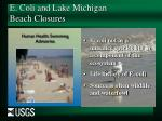 e coli and lake michigan beach closures