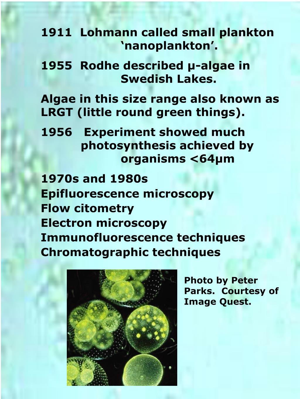 1911  Lohmann called small plankton 'nanoplankton'.