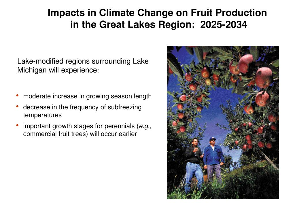 Impacts in Climate Change on Fruit Production