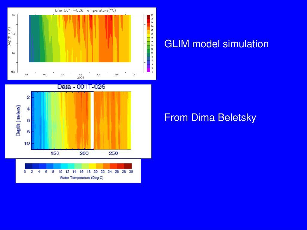 GLIM model simulation