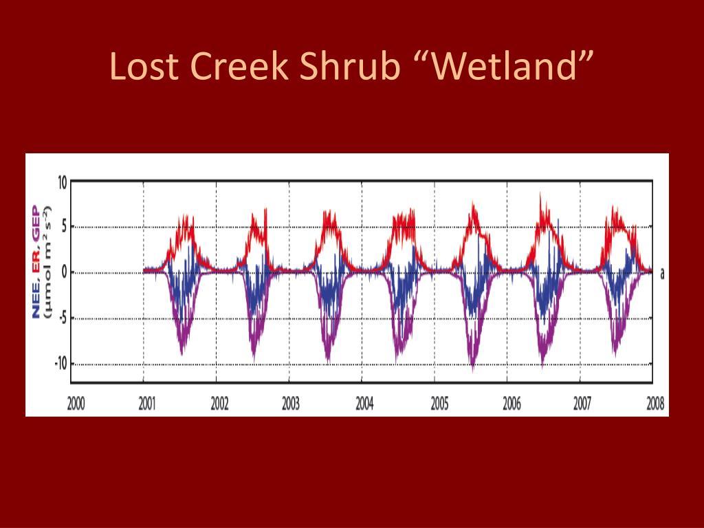 "Lost Creek Shrub ""Wetland"""