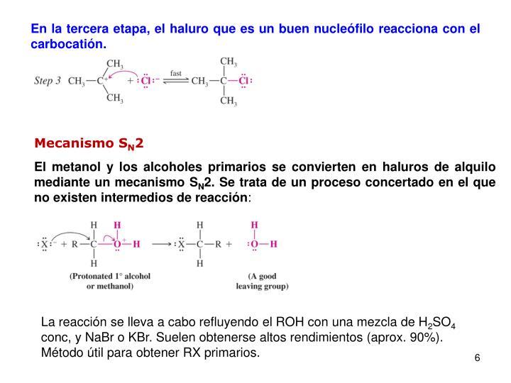 En la tercera etapa, el haluro que es un buen nucleófilo reacciona con el carbocatión.