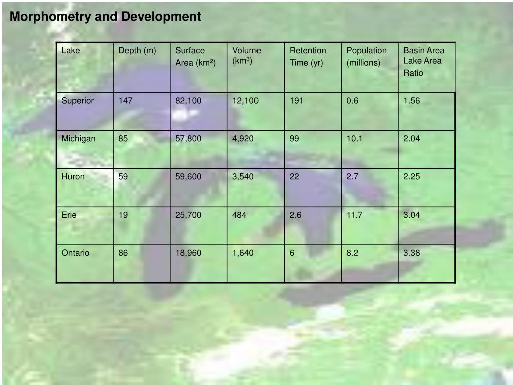 Morphometry and Development