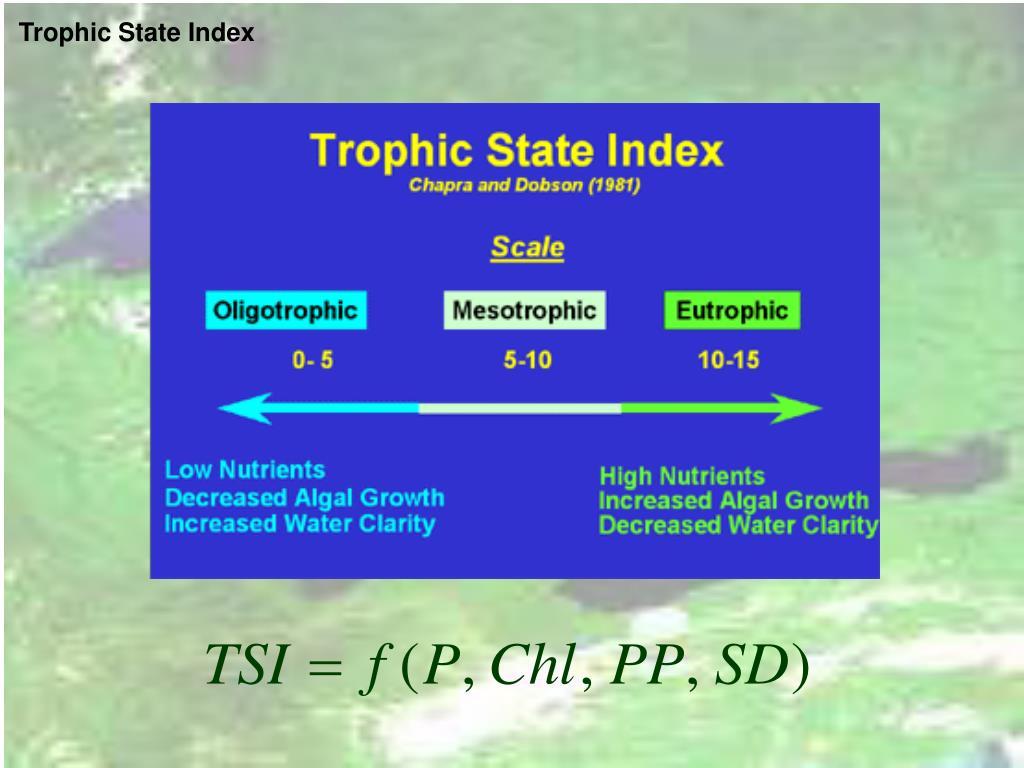 Trophic State Index