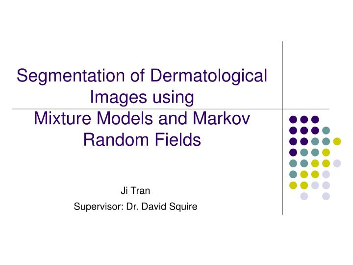 segmentation of dermatological images using mixture models and markov random fields n.