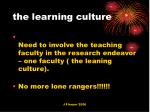 the learning culture