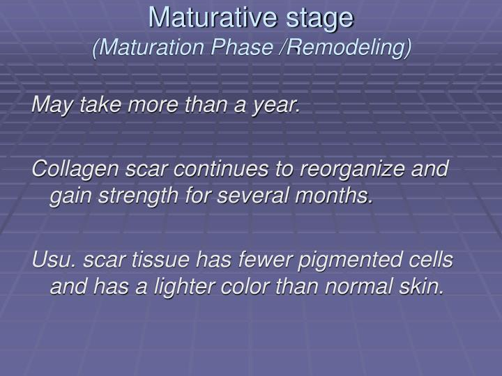 Maturative stage