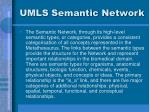 umls semantic network