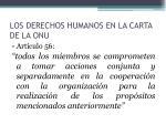 los derechos humanos en la carta de la onu4