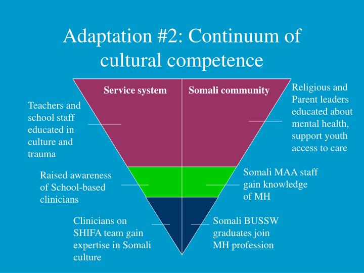 cultural competency of nursing