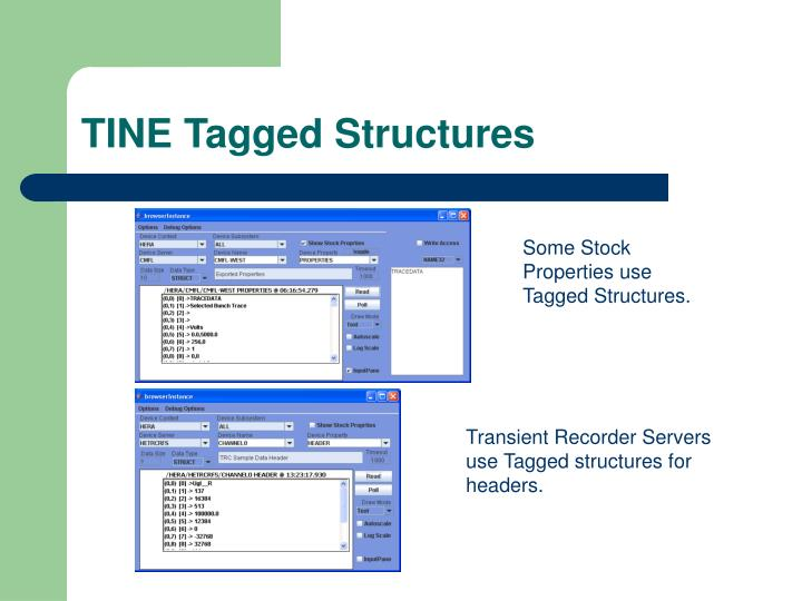 TINE Tagged Structures
