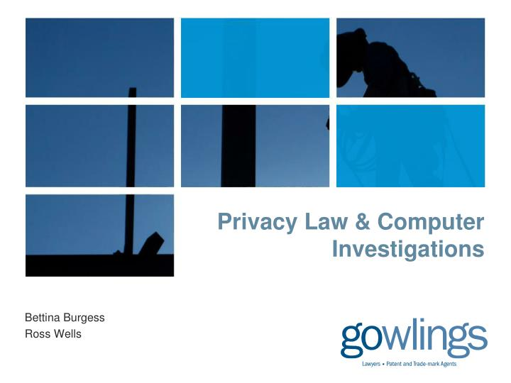 privacy law computer investigations n.