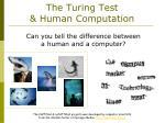 the turing test human computation
