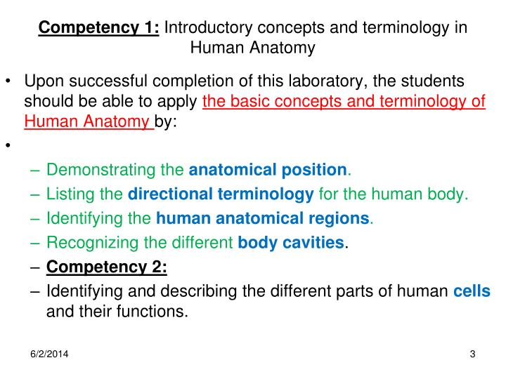 Ppt Anatomical Regions Directions Body Cavities The Cell