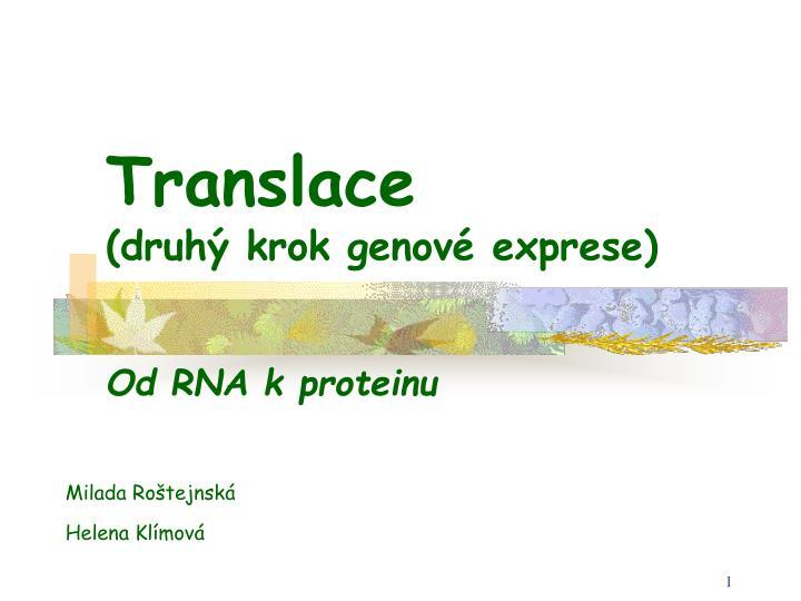 translace druh krok genov exprese n.