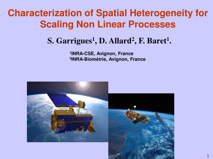 characterization of spatial heterogeneity for scaling non linear processes n.