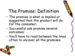the promise definition