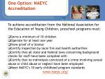 one option naeyc accreditation