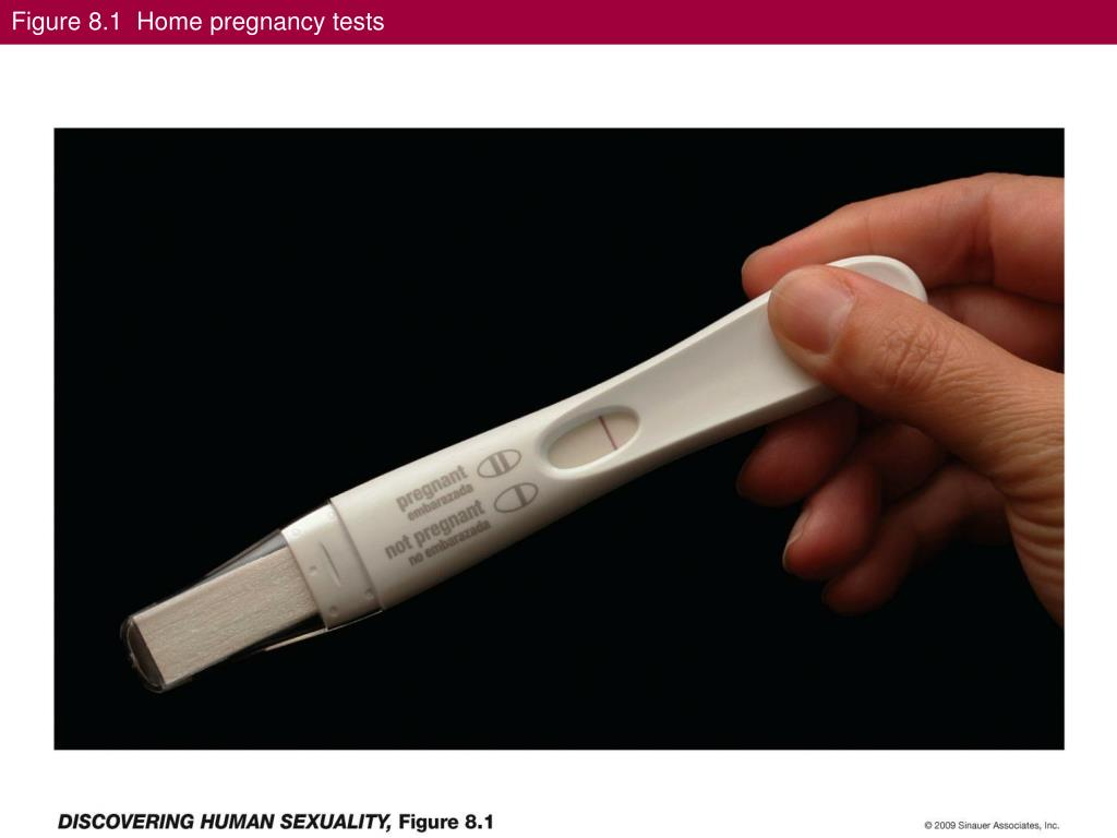 Figure 8.1  Home pregnancy tests