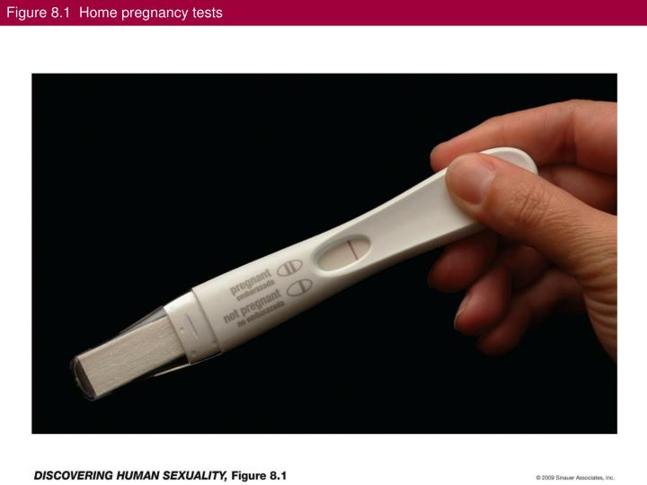 Figure 8 1 home pregnancy tests